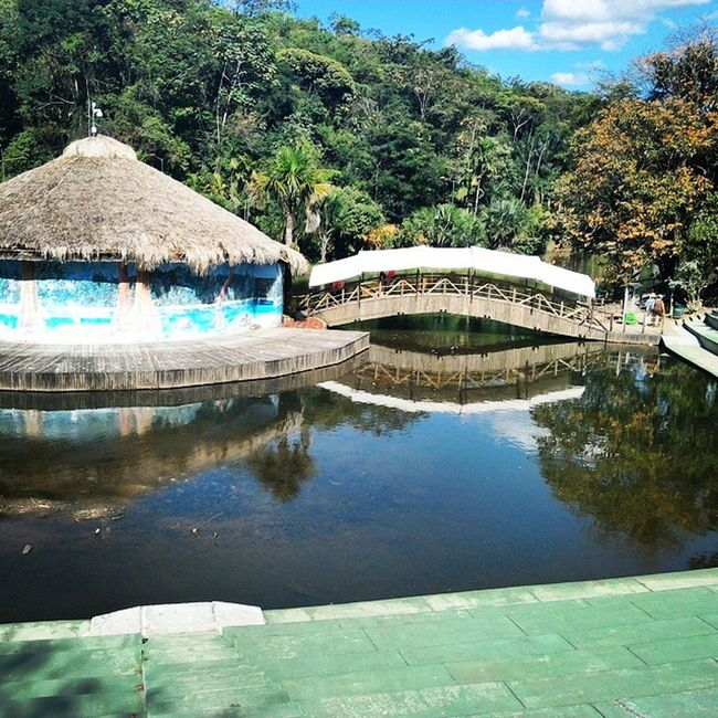 Nature Water Green Bioparque LosOcarros Villavicencio Colombia Zoo Cool Naturaleza 🌱🌴🌿💧💧🌞😊
