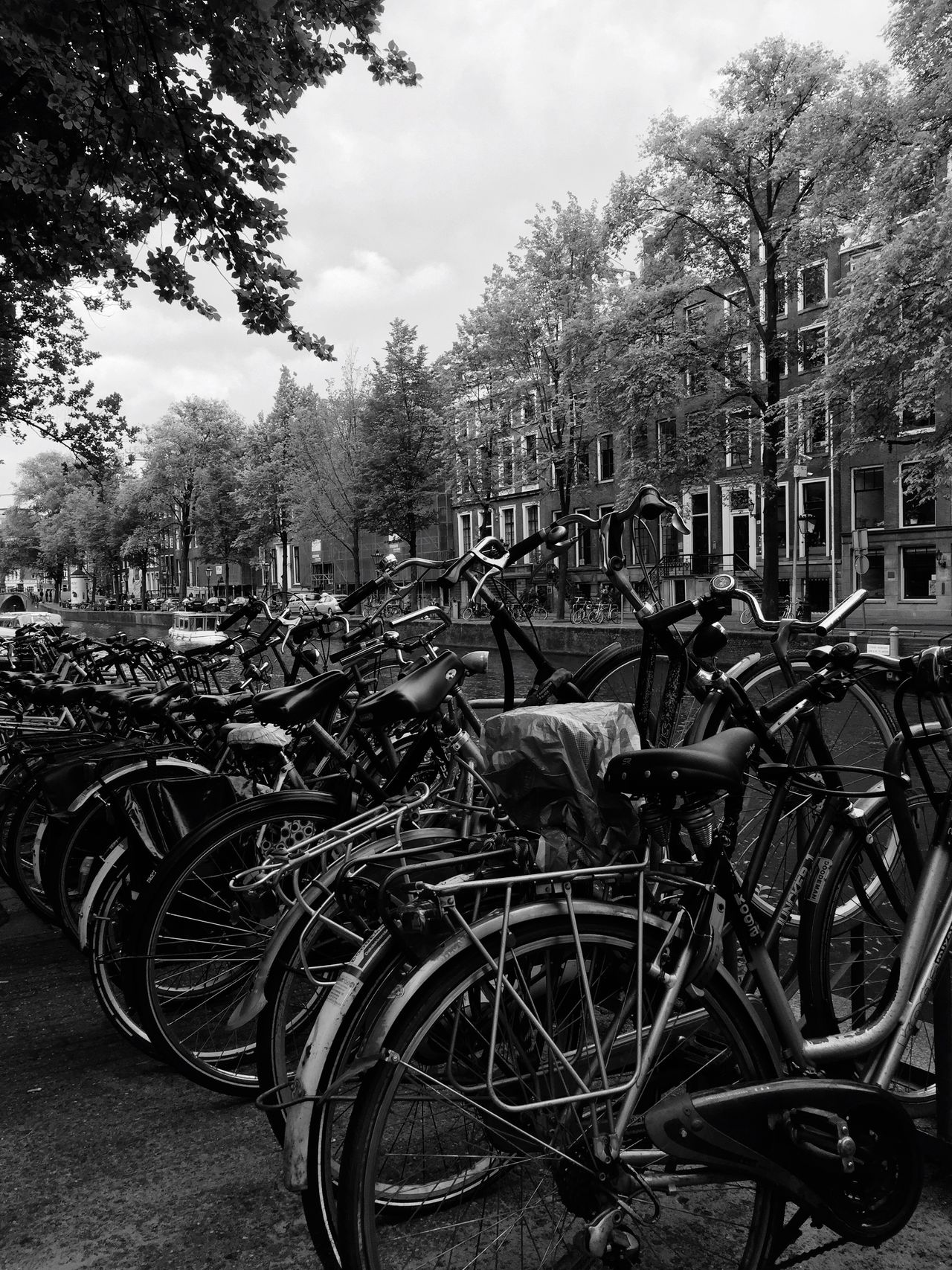 Bicycles Amsterdam Amsterdamcity Velos Blackandwhite The Street Photographer - 2017 EyeEm Awards