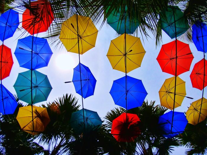 Sky Clouds And Sky Sky And Clouds Sky And Trees Sky And City Umbrella Low Angle View Variation Day Multi Colored Choice Full Frame No People Outdoors