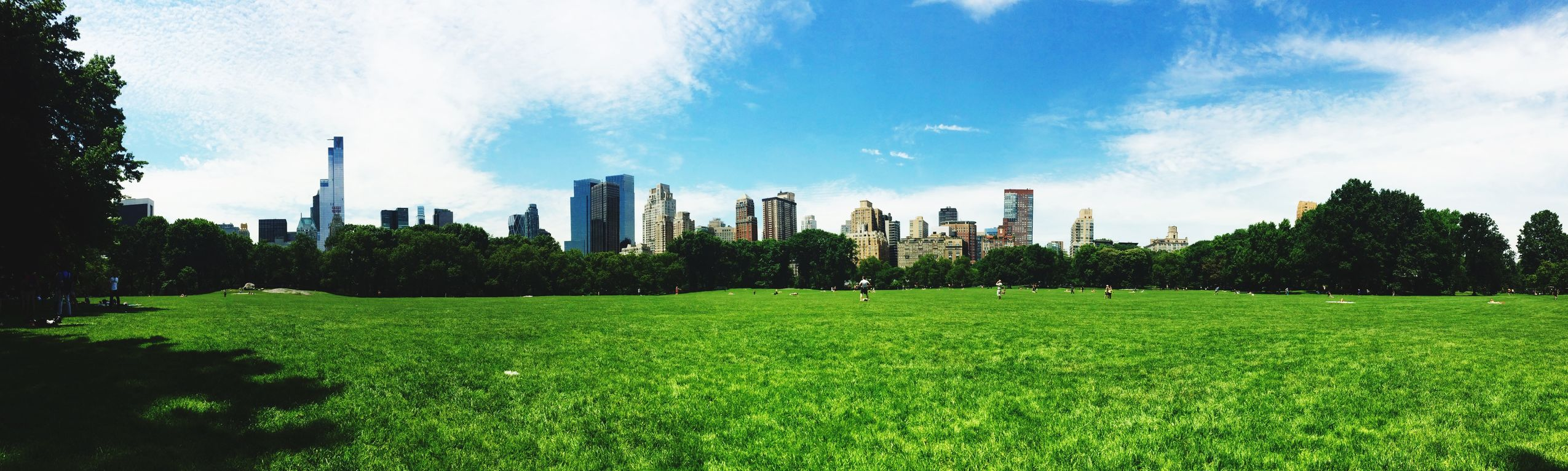 Central Park Green Newyork Picnic Grattacieli Sun And Clouds