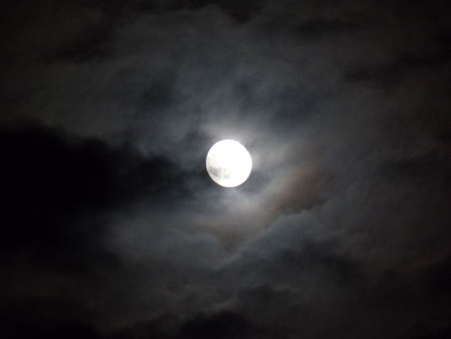 Moonlight Moonshot Nature Naturephotography Florida Nature Photography Eye4photography  MyPics Awesomeshot Naturelovers Checkthis Out Naturephotography CarmenVazquezPhotography Moon And Clouds Taking Pictures Nightphotography NiceShot Natural Beauty