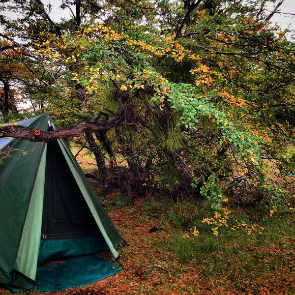 Argentina Backpacking Beauty In Nature Camping Feel The Journey Green Color Growth Non-urban Scene Plant South America Tent Tranquility Travel Tree