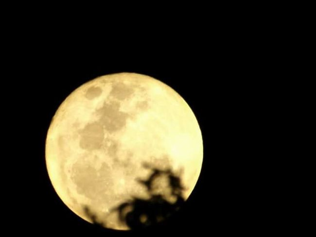 Fullmoon At The Sky Fullmoonsillhoutte Fullmoon Reflection Fullmoon And Trees EyeEm Gallery Sunset_collection Eyeem Philippines Eyeem Photography EyeEm Best Shots - Nature FujiFilm Finepix S3400