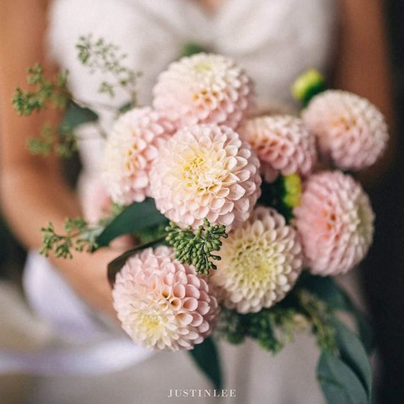 Dahlias..! Portlandphotographer Portlandweddingphotographer Portlandwedding Pdxweddings Oregonwedding Oregonweddingphotographer Portlandbride Portlandengagement Nwweddings Nwbrides Bouquet Flowers Dahlia Portlandflorist Portlandbrideandgroom Oregonbride Portlandia Justinleeportland Oregonbridemag Photobugcommunity