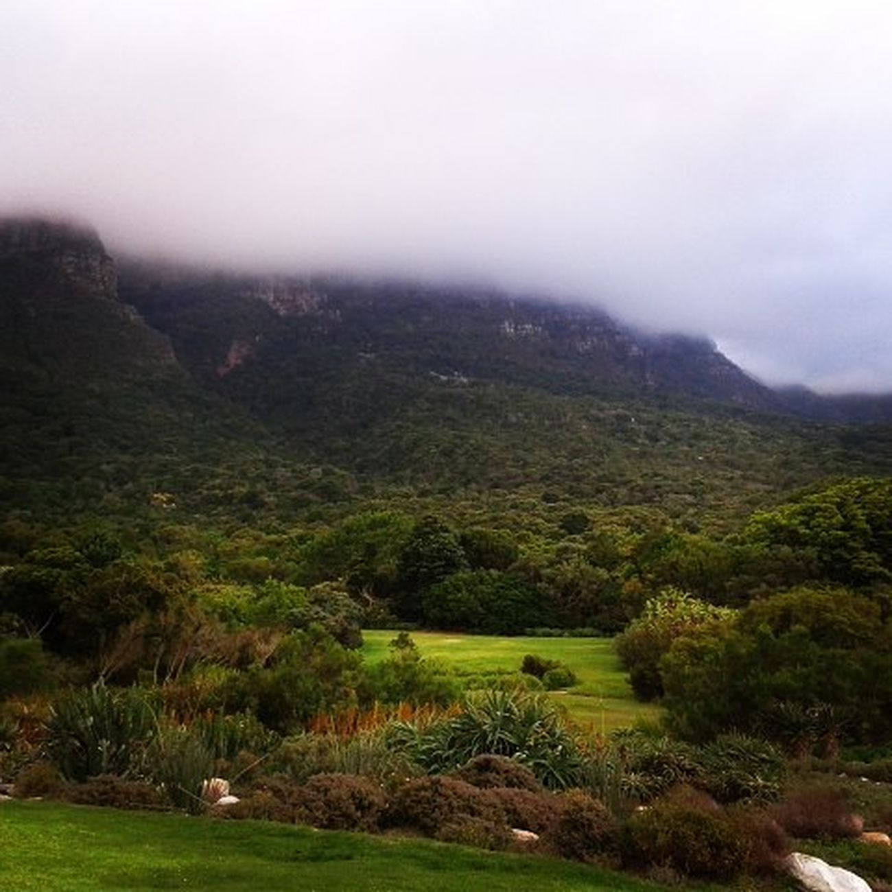 Always a treat. Kirstenbosch Gardens Treat Capetown Cloudporn