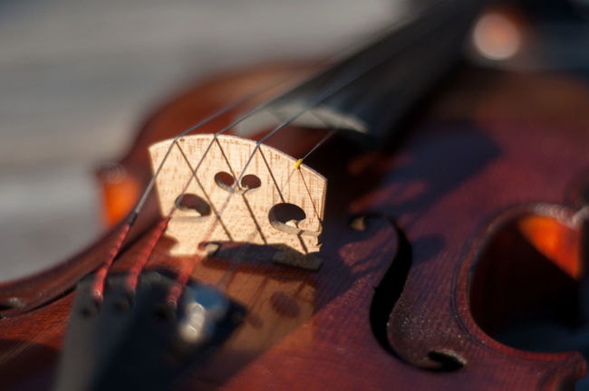 I started playing the violin in 6th grade as a part of a school orchestra program. I've had this particular instrument since 2002. The instrument is French made circa 1910-1920. I hope you enjoy these photos as much as I enjoy playing my beautiful violin! Aged Wood Arts Culture And Entertainment Bridge Depth Of Field Durham NC F-hole Front Side Music Musical Instrument Natural Beauty Outdoors Reflection Sound Hole Sunlight Violin