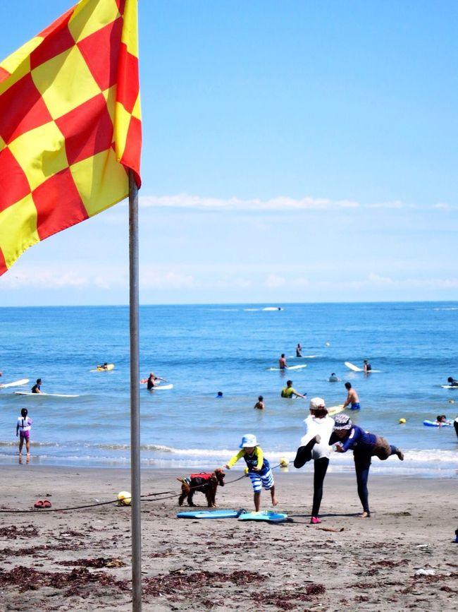training for Surfin On The Sand Dog Surfer Flag Summer Sea And Sky Beach Enjoying Life