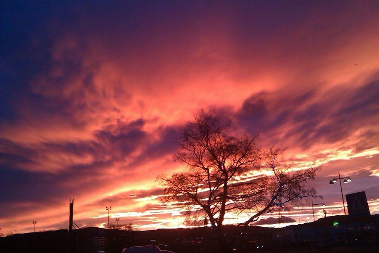 Morning Has Broken Trondheim Nordic Glow Winter Glove Nordic Nights