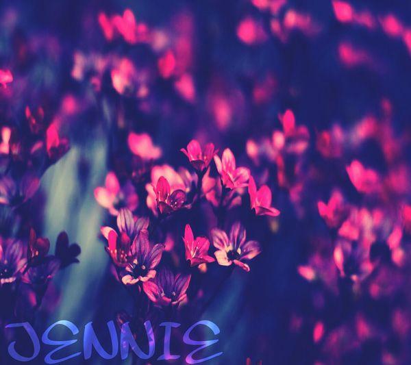 Pretty Pinkpurpl Purple Flowers