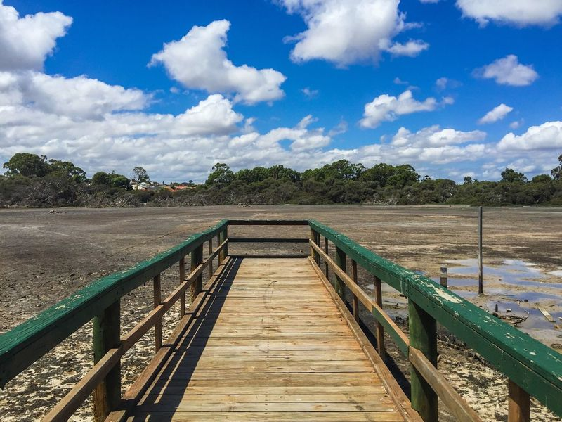 Pier to Dried Up Swamp Blue Sky Cumulus Quiet Dried Up Lake Clouds And Sky Dried Wetland Desolate Tranquil Scene Peaceful Place Spearwood Western Australia Trees Nature Reserve Conservation Dried Drought Market Garden Swamp Wetland Swamp Jetty Pier Dock Outdoor Photography Green