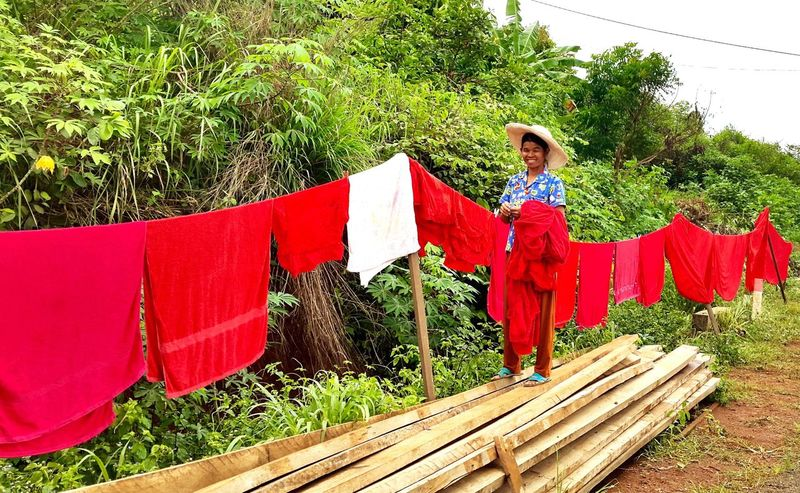 Wood Woodpile Jungle Middle Of Nowhere Side Of The Road Maid Cleaner Working Outside Hanging Out The Washing Red Red Towels Washing Line Clothesline Mondulkiri, Cambodia Cambodia