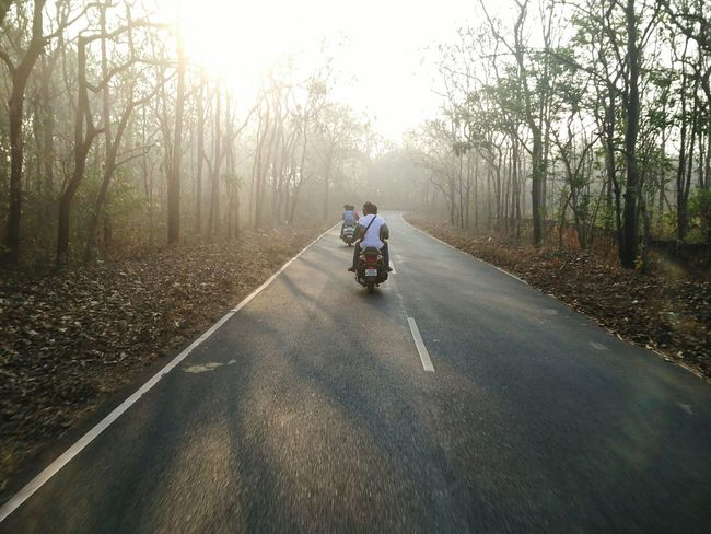 Early morning scooter ride through mist and woods. Early Morning Early Mornings Early Morning Ride Early Morning Mist Early Morning Fog Foggy Morning Misty Morning Morning Woods Trees Placid  Scooter Life Scooter Ride Dawn Winter Goa Goa India Roads Scenery Nature Calm Peaceful And Quiet Serene Travellers Journey
