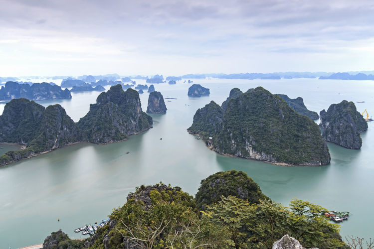 Panoramic view of Halong Bay, Vietnam ASIA Beauty In Nature Boat Cliff Cloud - Sky Ha Long Ha Long Bay Junk Luxury Nature Rock Rock Rock - Object Rock Formation Scenics Sea Sky Southeast Asia Tranquil Scene Tranquility Vietnam Vietnam Trip Vietnamese Water Young Couple