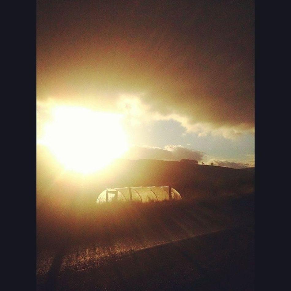 Bricht!!!! Mycamerastories Sun Hello Polytunnel sunshine clouds weathernerd landscape thesky bricht autumn november waitingforthebus today instascotland igscotland nature weather visitscotland naturalscotland