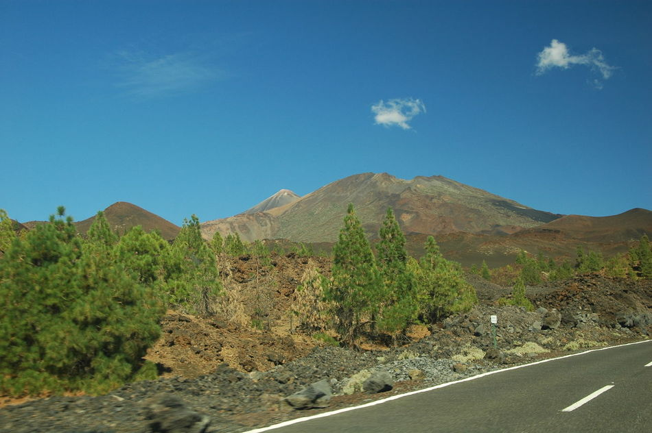 Beauty In Nature Blue Canarias Canary Canary Islands Cho Tenerife Day Geology Landscape Mountain Nature Nature No People Outdoors Parque Nacional Del Teide Scenics Sky Teide Teide Volcano Tenerife Tranquil Scene Tranquility Tree Vulcan