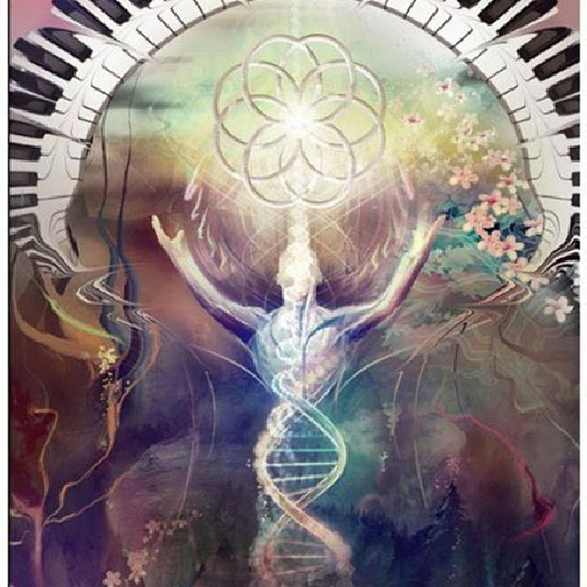 Absolutely love this image Floweroflife Spirituality Metaphysics Dna acension transcending consciouness
