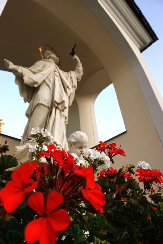 statue Flower Statue Low Angle View Sculpture No People Architecture Beauty In Nature Day Outdoors statue saint Saint Flowersflower White Statue White Background Red Flower Red Red Flowers Closeup Red Flower Petal Flower Photography Flower Head Passion Flower Focus On Foreground Red And Green Red Color