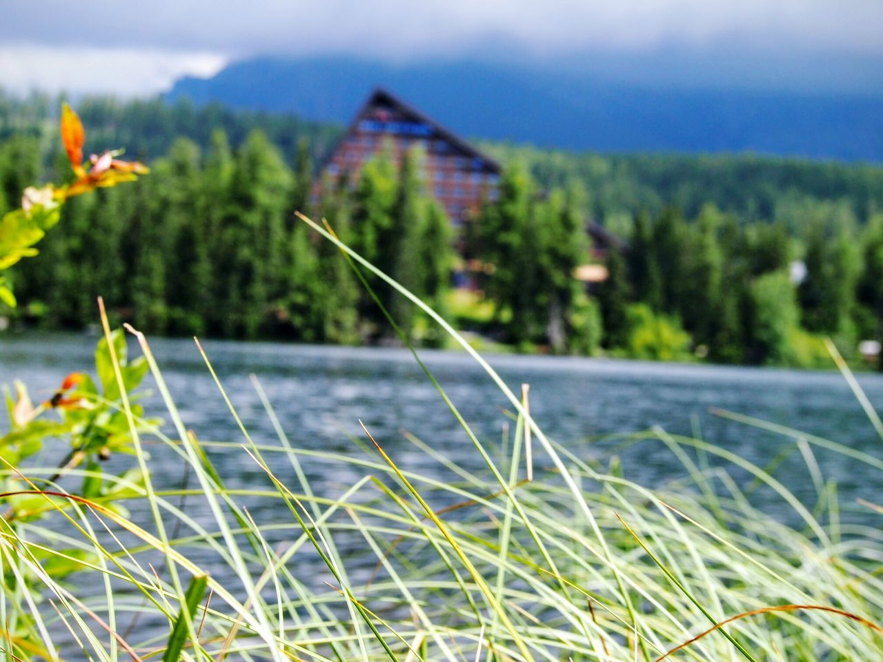 Tatra Mountains Slovakia Lake Grass Architecture Nature Forest Water Colour Of Life Strbske Pleso Travel Travel Destinations Trip Holiday Tourist Tourist Destination