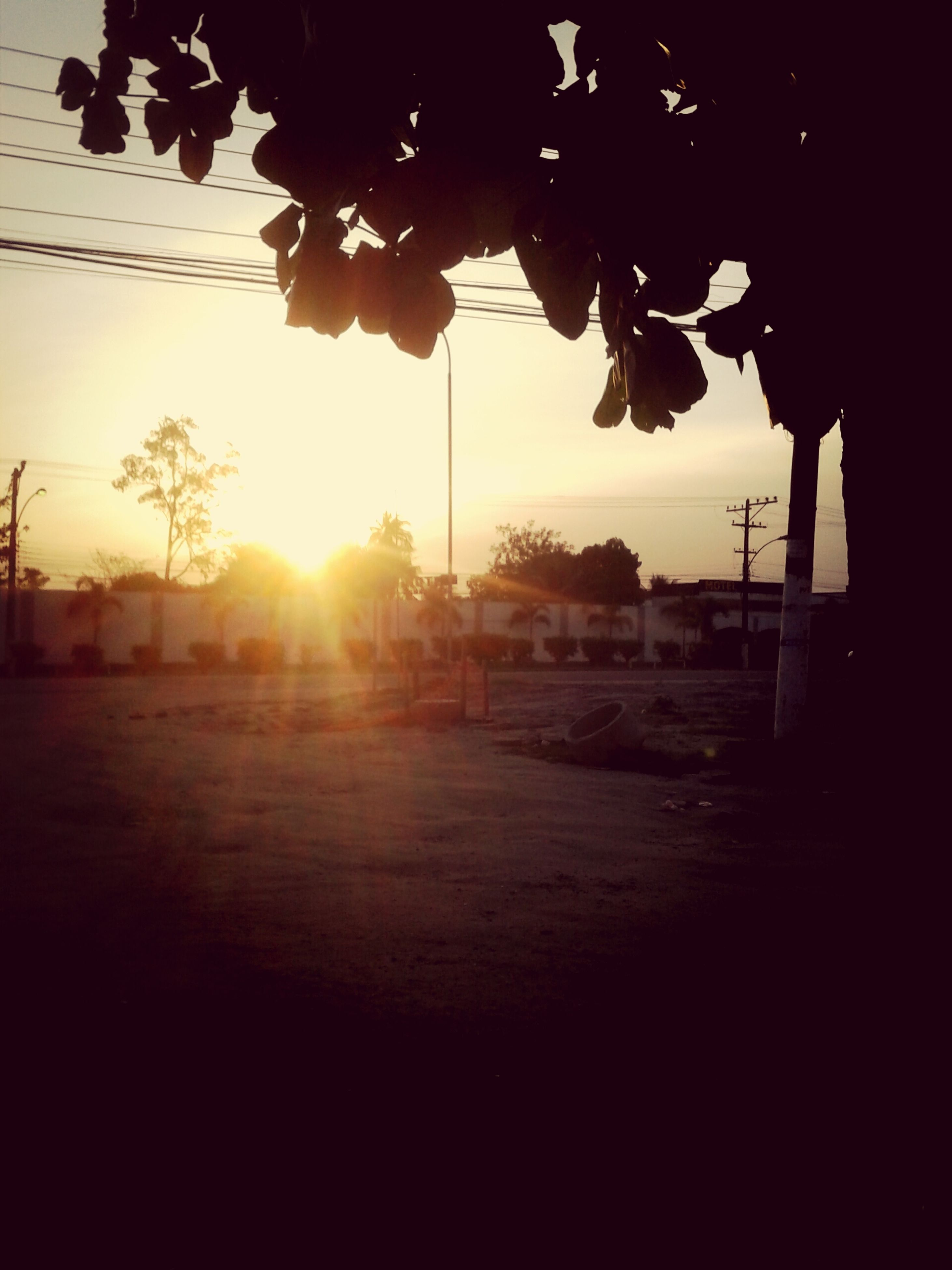 sun, sunset, silhouette, sunlight, sunbeam, lens flare, tree, sky, built structure, architecture, building exterior, nature, shadow, tranquility, outdoors, back lit, no people, street light, orange color, street