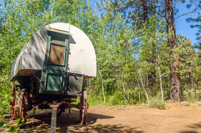 Old West style covered wagon in a forest in Central Oregon Antique Bend Central Oregon Colorful Covered Deschutes Forest Grass Landscape Nature Oregon Outdoors Park Rushing Tourism Travel Tree United States View Vintage Water West Wheel Wild Wood