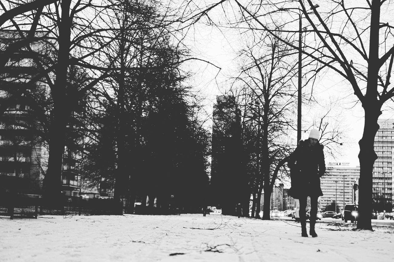 Wintertime Winter Cold Temperature Real People Tree Rear View Snow Winter Full Length Lifestyles Walking One Person Outdoors Warm Clothing Women Beauty In Nature Real Photography Berlin Streetphotography Streetphoto_bw Day Cold Cold Days