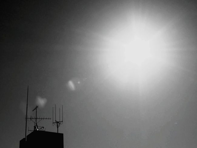 Sun Sunlight Sky No People Low Angle View Sunbeam Nature Outdoors Day Black And White Blackandwhite Photography Monochrome Photography Light And Shadow Black And White Photography Cityscapes Monochrome _ Collection Black & White City Low Angle View Architecture Silhouette City Life
