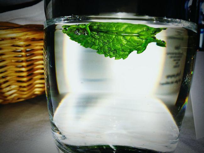 Mint Leaves Mint Mint Green Water Glass