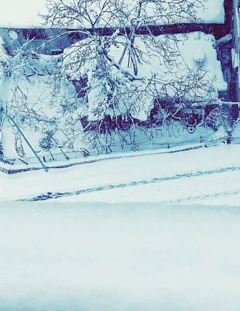 Cold Winter ❄⛄ Cold Days Snowy Days... Ilikedthisphoto