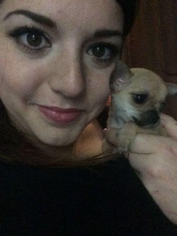 Selfie ✌ Dog Puppy Love