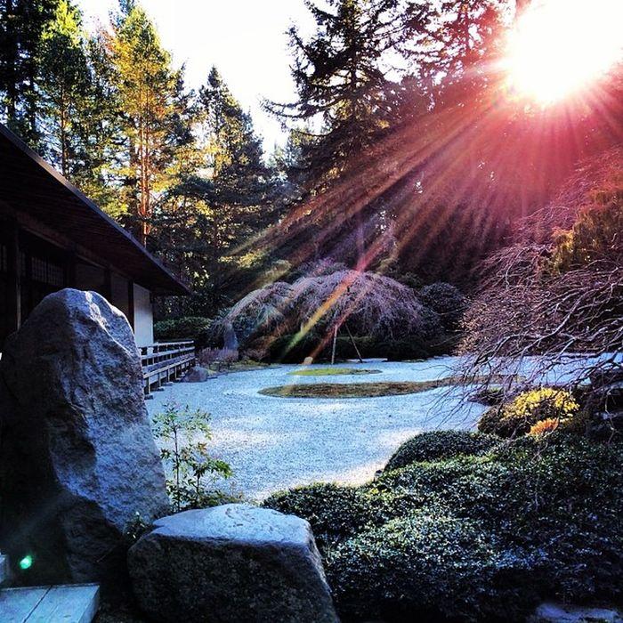Pdx Portland Japanesegarden Washingtonpark oregon