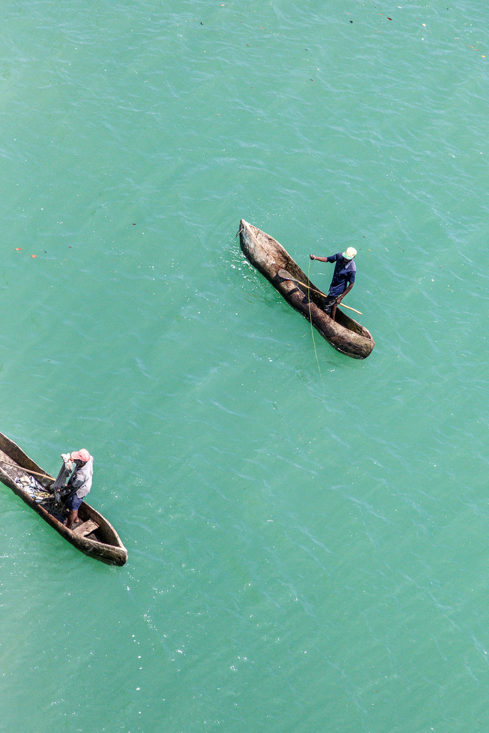 Blue Boat Catch Of Fish Day Fisherman High Angle View Lake Men Mode Of Transport Nature Nautical Vessel Occupation Outdoors Rowing Swimming Togetherness Tranquility Transportation Two Animals Water Waterfront