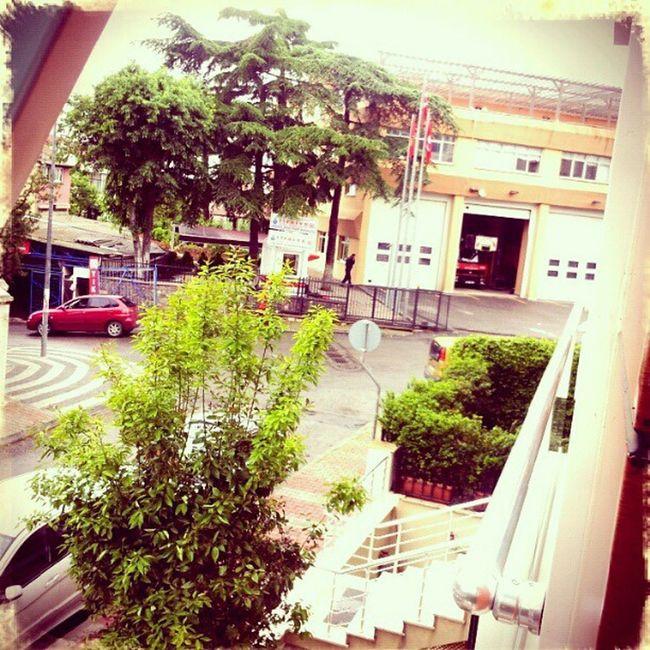 Firestation Finetube Home Instagram instaphoto webstagram igear photooftheday