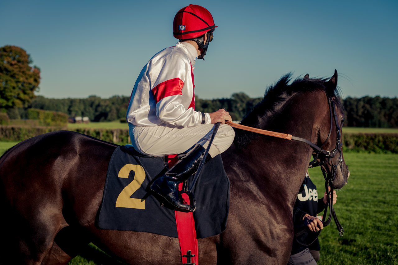 2 7 Beautiful Berlin Blue Sky Brandenburg Championship Competition Cup Germany Green Hoppegarten Horse Riding Horserace Loose Nature Numbers Race Riding Sparkasse Sport Summer Track Winner Zeitung