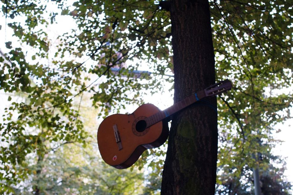 Beautiful stock photos of guitar, Acoustic Guitar, Arts Culture And Entertainment, Berlin, Day