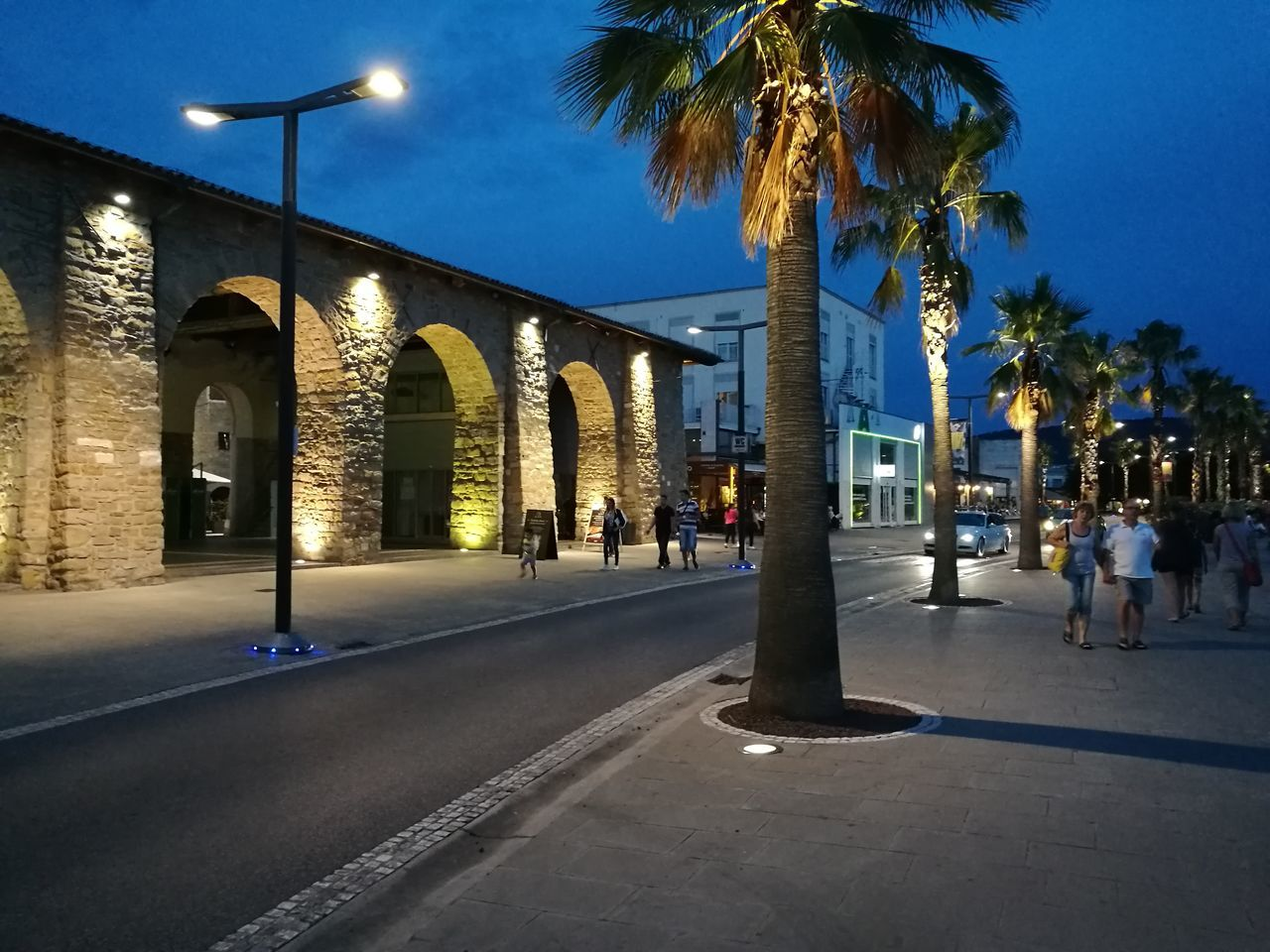 palm tree, illuminated, building exterior, architecture, built structure, street, tree, night, road, outdoors, sky, city, no people