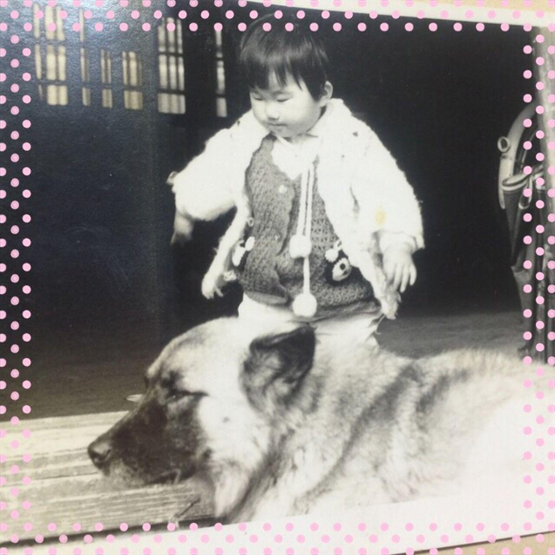 男の子みたいだけど、私❣️多分、2歳ぐらいかな。愛犬ベルと。。。良く私と遊んでくれました。懐かしいな😂Though is like a boy; I of around 2 years old😂 Pet dog Bell played with me well😂 Love Dog BIG Me Gentledog Iphone6 Trust Memory