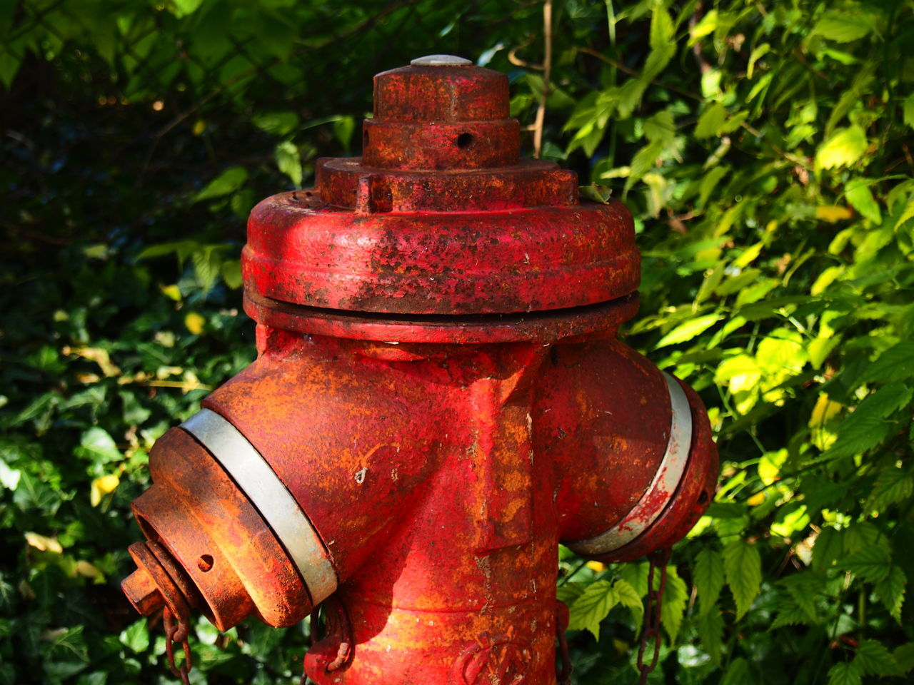 Close-up Day Fire Hydrant Metal No People Outdoors Red