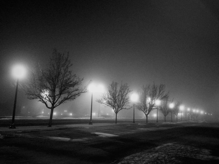 Black And White Photography Spokane Wa Black And White Spokane Washington Black And White Collection  Black And White Collection  Black & White Trees Night View Solitude Night Lights Fog Welcome To Black