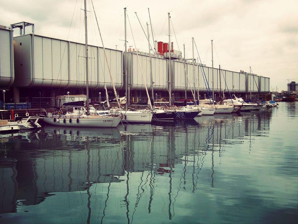 Zena4ever Boats And Moorings Aquarium Genova, Ital