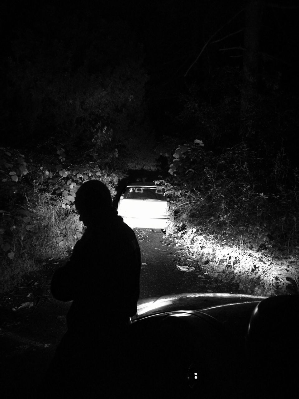 silhouette, real people, dark, night, car, one person, transportation, standing, men, indoors, tree, water, people
