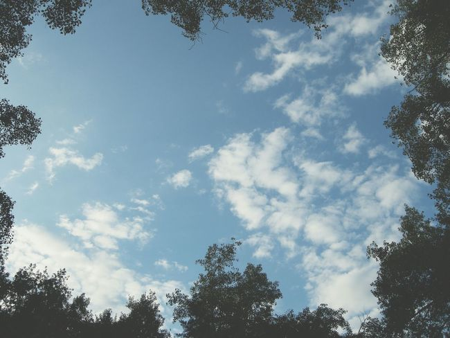 VSCO Vscocam Tunali Sky