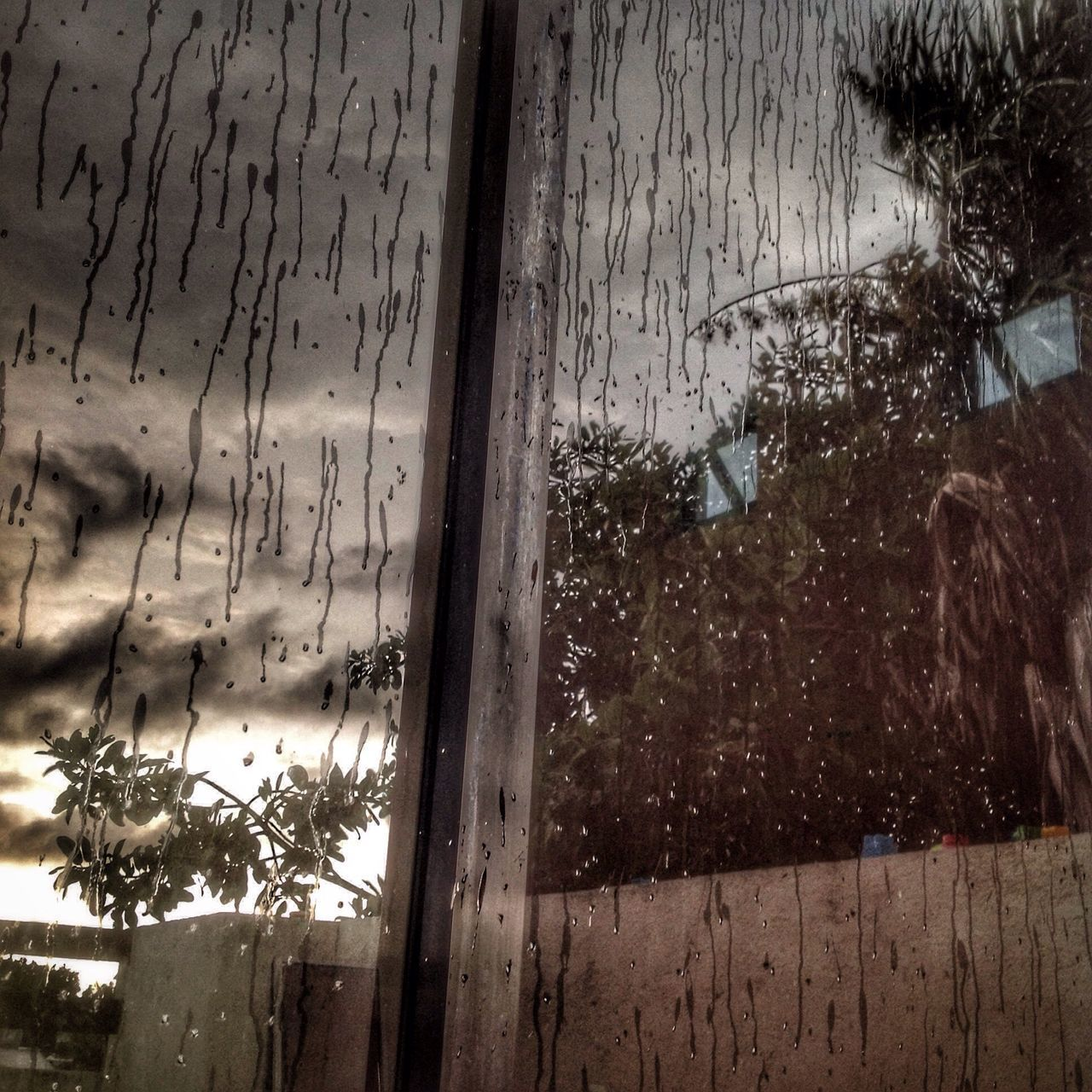 Reflection. Out with the rain... Window No People Day Outdoors Water Nature Tree Sky Close-up In And Out Mirror Morning Tree Home Interior Clouds Crystal Rain Drops Drops Of Water Drops Of Rain