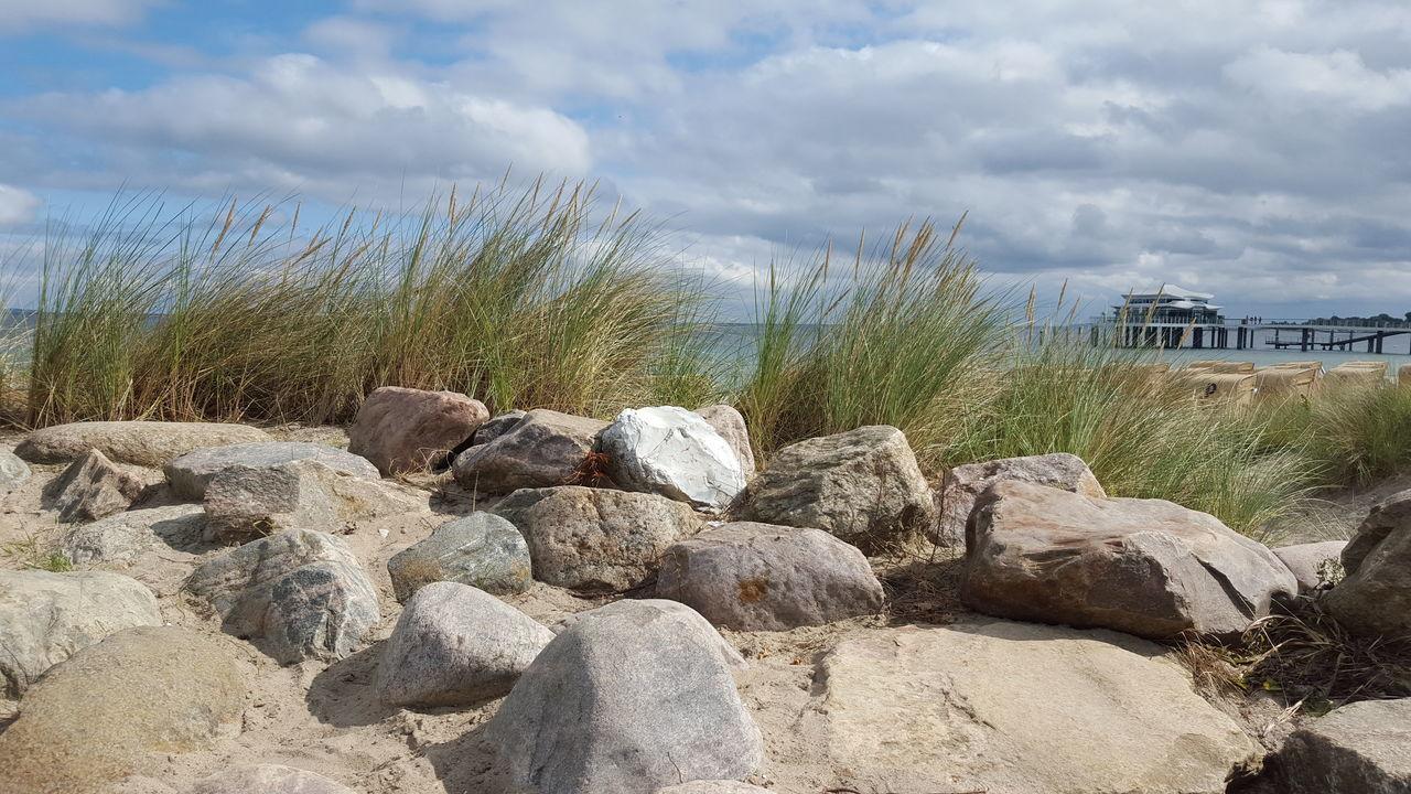 Beach Nordsee Küste Coastline Coast Rocks Grass Relaxing Smell Camera: Galaxy S6
