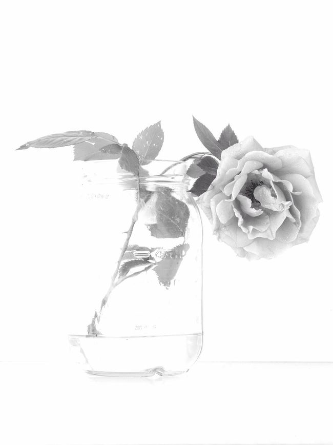 Happy late Mother's Day Flower Blackandwhite