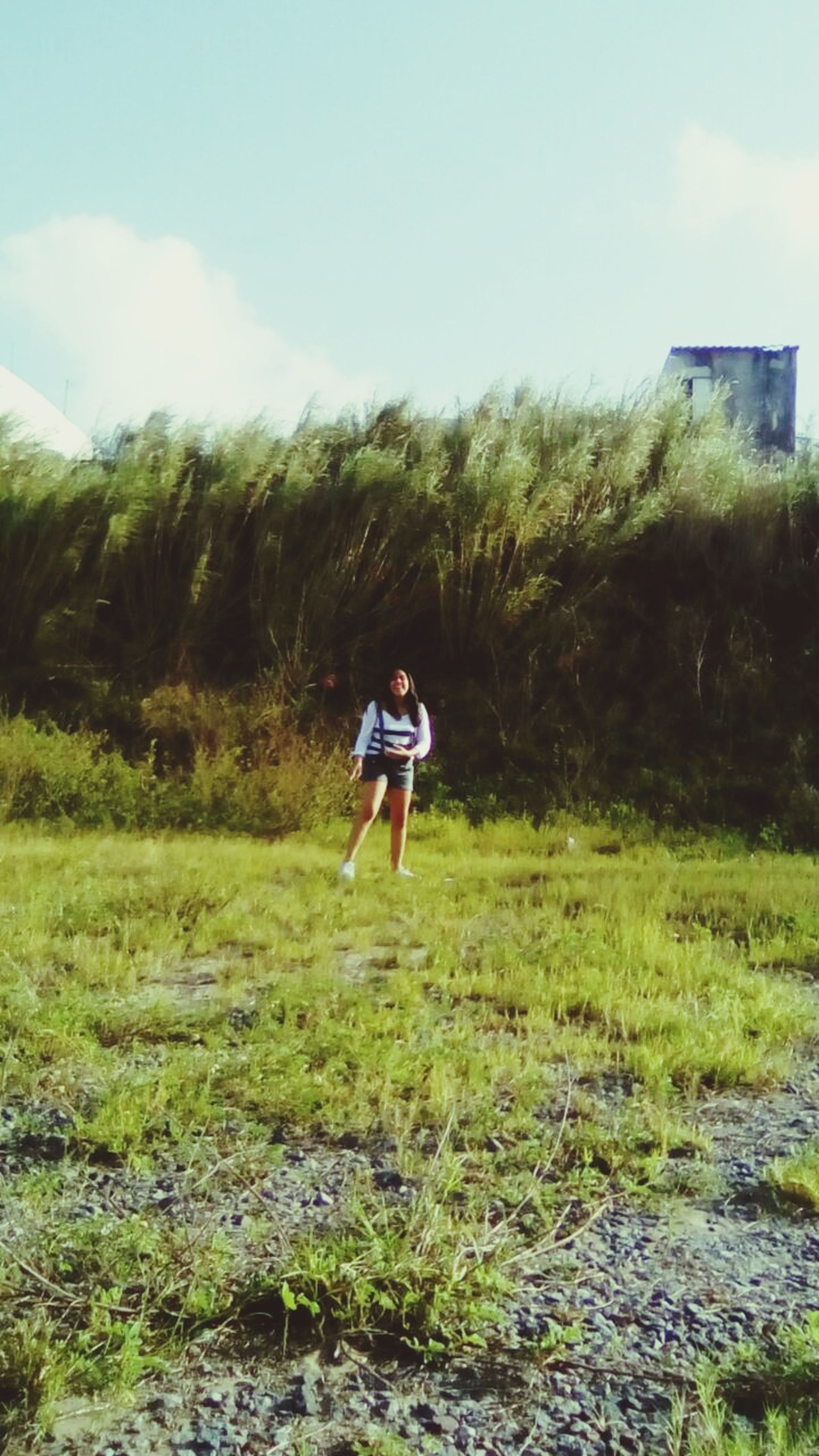 grass, full length, nature, one person, real people, adventure, day, plant, outdoors, forest, sky, tree, people