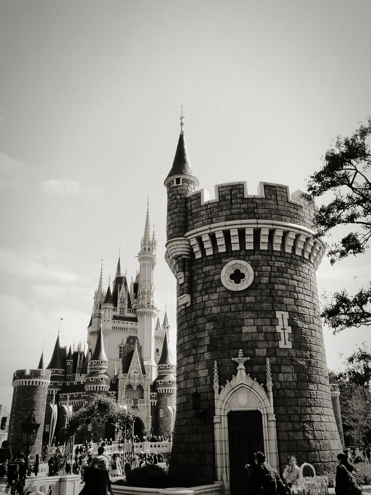 Tokyo Disney Land TDL Cinderella Castle Tokyo Disney Resorts Black & White Black And White Photography Enjoying Life