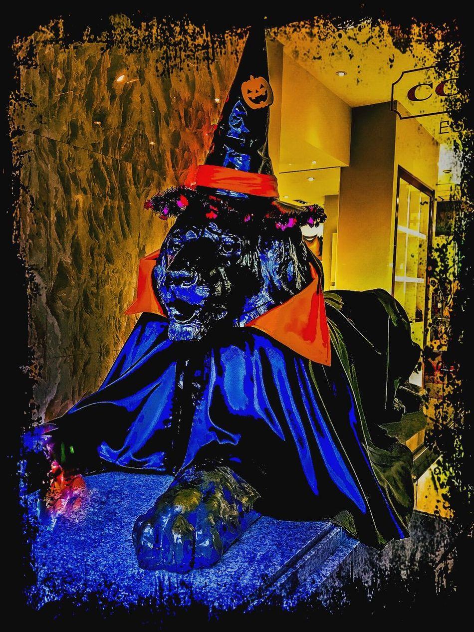 A Happy Halloween !! 🎃🌳👻 Halloween Lion Bronze Bronze Statue Mitsukoshi Wizard Cloak Hat Hello World Sendai Tadaa Community Trick Or Treat