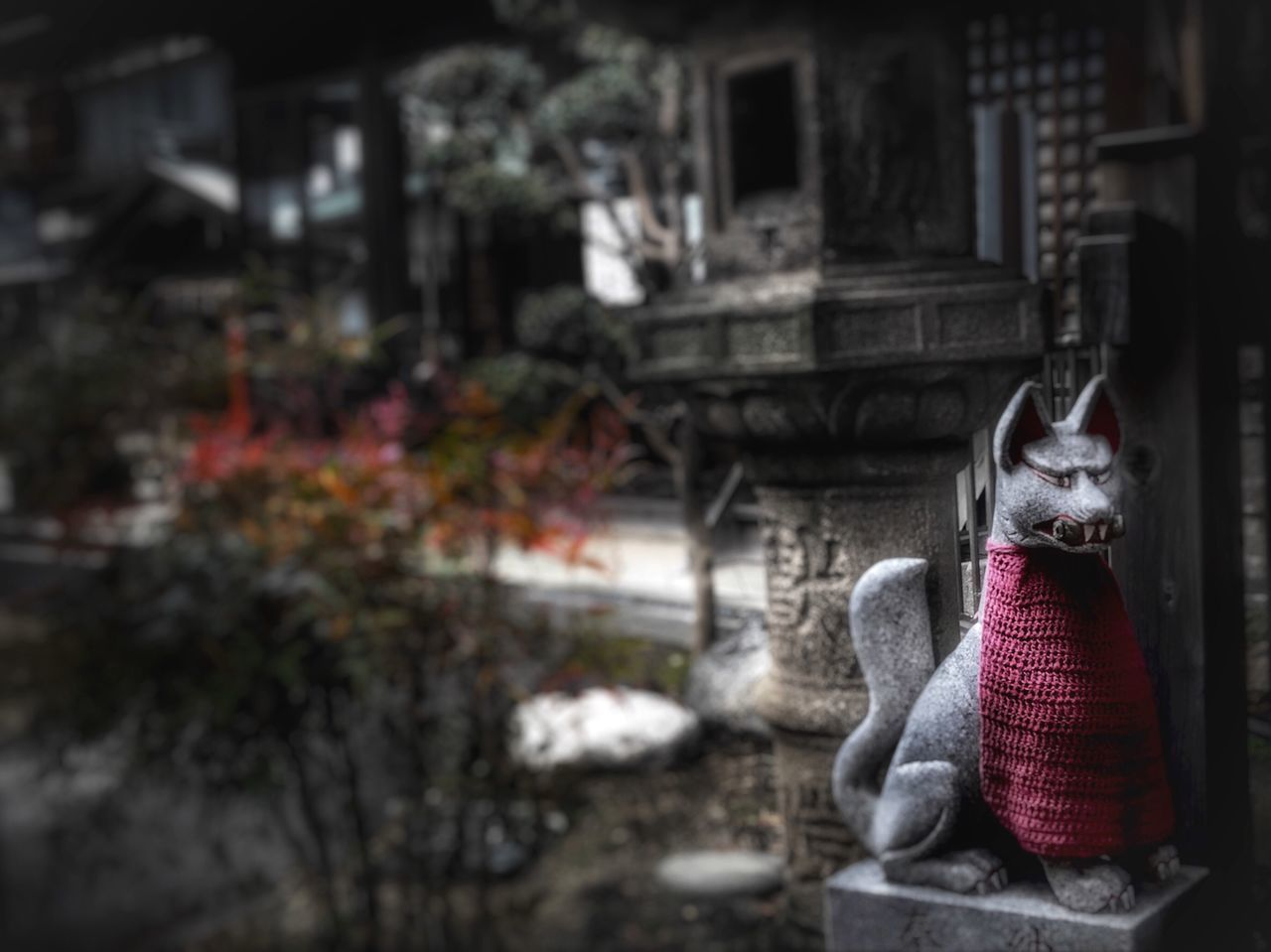 No People Focus On Foreground Outdoors Day Statue Building Exterior Pets Animal Themes Close-up Mammal Japan Matsuyam Jinjya Oinarisan