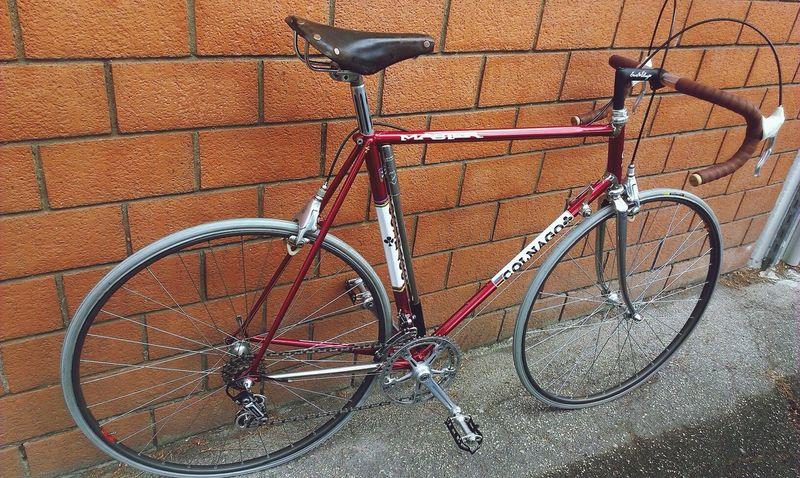 Colnago Master livrea Beppe Saronni Bike