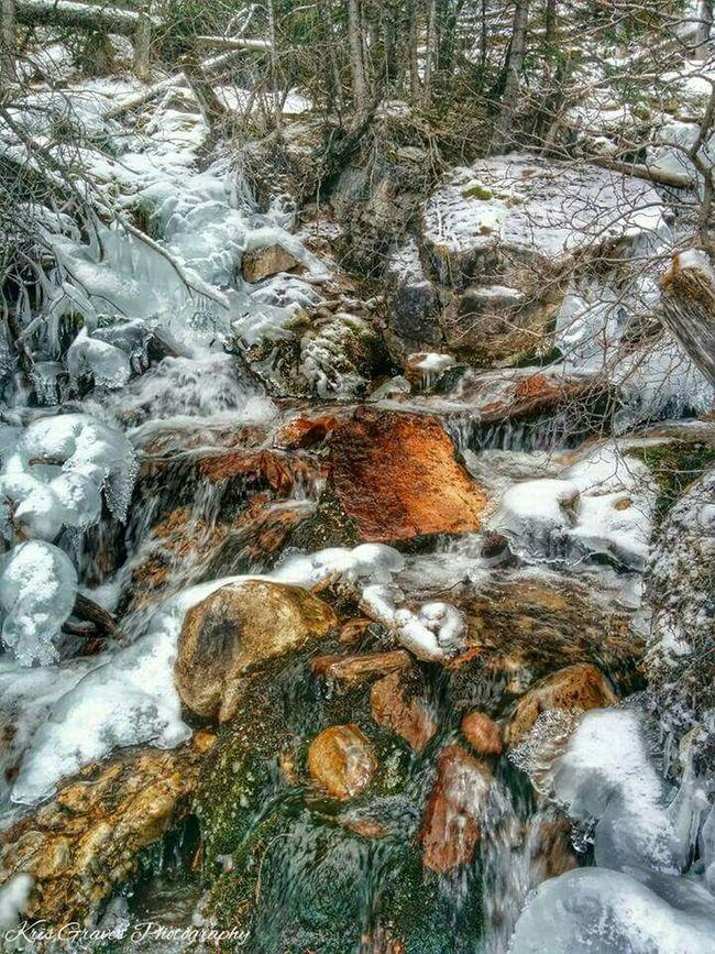Hanging Out Check This Out Hi! Travel Enjoying Life Eyemphotography EyeEm Nature Lover Snow ❄ Canadian Rockies  First Eyeem Photo EyeEm Best Shots